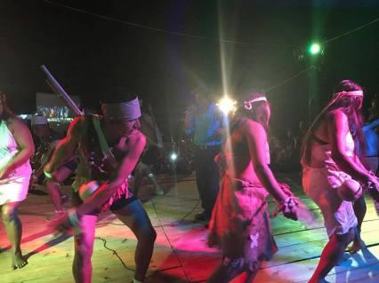 festivalwaspam